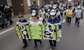 Carnavalstoet: pandaberen